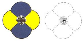 Цветок из 4 лепестков